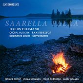 Saarella Palaa (Fire on the Island) by Various Artists