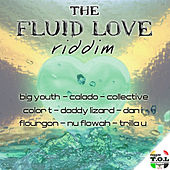 The Fluid Love Riddim by Various Artists