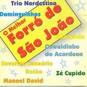 O Melhor Forró de São João von Various Artists