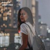 Meet You (Remixes) by David K.