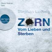 Zorn - Vom Lieben und Sterben Gekürzte Fassung by Stephan Ludwig