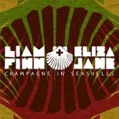 Champagne in Seashells by Liam Finn