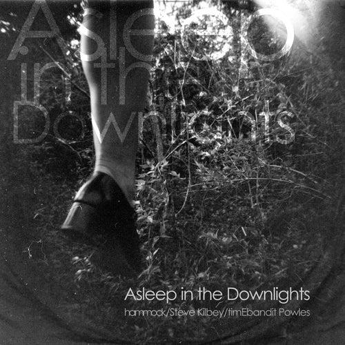 Asleep in the Downlights by Hammock