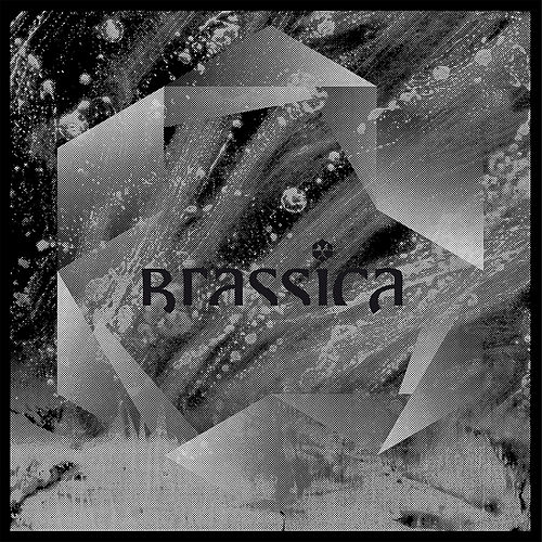 Temple Fortune EP by Brassica