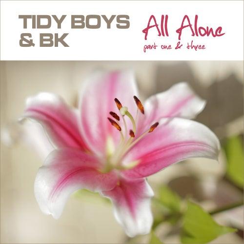 All Alone by Tidy Boys