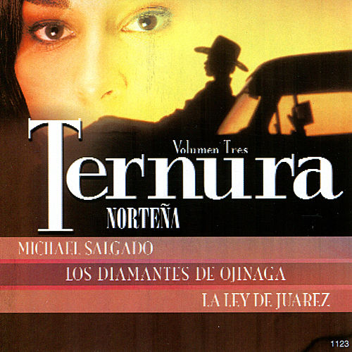 Ternura Norteña, Vol. 3 by Various Artists