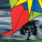 Lightning Loves the Kite de Rachel Roberts