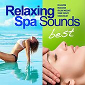 Best of Relaxing Spa Sounds (50 Gentle Instrumental Tracks and Pure Nature Sounds for Relaxation, Meditation, Healing Massage, Sound Therapy, Stress Relief, Good Sleep) von Wellness