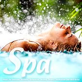 Spa - Music for Massage, Wellness, Relaxation, Healing, Beauty, Meditation, Yoga, Deep Sleep and Well-Being von S.P.A