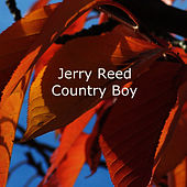 Country Boy de Jerry Reed