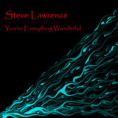 You're Everything Wonderful by Steve Lawrence