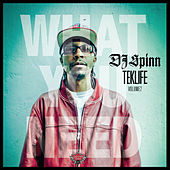 TEKLIFE Vol.2: What You Need de DJ Spinn