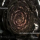 My Flower Is The Universe - Single de Various Artists