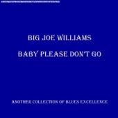 Baby Please Don't Go de Big Joe Williams