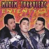 Ententyci de Maxim Turbulenc