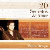 20 Secretos de Amor by Palito Ortega