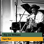 Super Best de Big Joe Williams