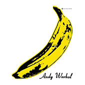 The Velvet Underground & Nico 45th Anniversary de The Velvet Underground
