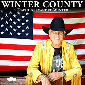 Winter-Country by David Alexandre Winter