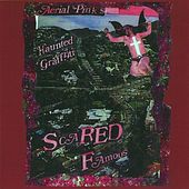 Scared Famous de Ariel Pink's Haunted Graffiti