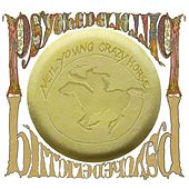 Psychedelic Pill by Neil Young