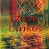 Excitos Latinos de Various Artists