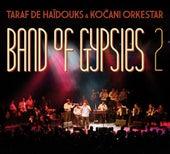 Band of Gypsies 2 by Taraf de Haidouks