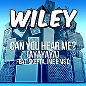 Can You Hear Me? (ft. Skepta, JME & Ms D) by Wiley