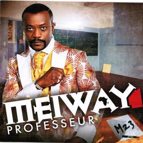 Professeur (M 23) by Meiway