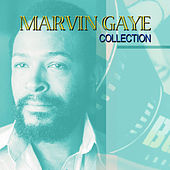 Best Of Tour by Marvin Gaye