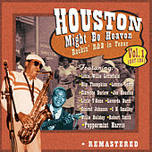 Houston Might Be Heaven Vol 1 de Peppermint Harris