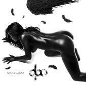 Angel Caido by Qbo
