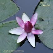 Pachelbel: Canon in D - Mendelssohn: Wedding March - Chopin: Waltzes & Impromptu - Listz: Love Dream & la Campanella - Sinding: Rustle of Spring - Granados: Danza Espanola - Rinaldi: Works de Walter Rinaldi