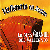 Vallenato en Accion: Lo Más Grande del Vallenato de Various Artists