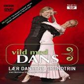 Vild Med Dans - Dansetrin Til Selskab Og Fest by The Antonelli Orchestra