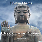 Buddhist Tibetan Chants Vol2 with Brainwave Entrainment for Meditation (Chanting Audio) by Brainwave-Sync