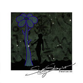 What Can I Do - Single by Sally Shapiro