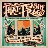 That Teasin' Rag: Vintage American Arrangements from the Ragtime Era by Peacherine Ragtime Orchestra