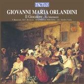 Orlandini: Il Giocatore by Virgilio Bianconi