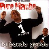 Puro Mambo by Pena Suazo Y Su Banda Gorda