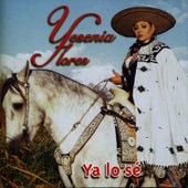 Ya lo Se by Yesenia Flores