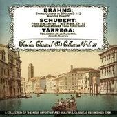 Timeless Classical Collection Vol. 20 de Various Artists