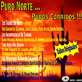 Puro Norte Puros Corridos de Various Artists
