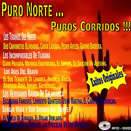 Puro Norte Puros Corridos by Various Artists