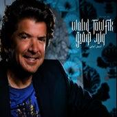 Best of Tawfic by Walid Tawfic
