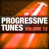 Progressive Tunes, Vol. 12 by Various Artists