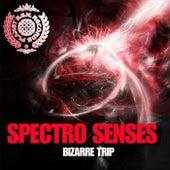 Bizarre Trip von Various Artists