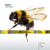 Hummel: Schöne Minka by Various Artists