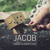 Nice to Meet You by Jacob