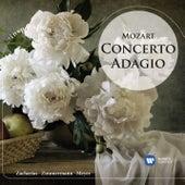 Concerto Adagio: Mozart von Various Artists